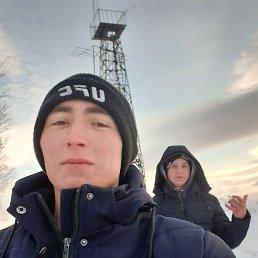 Кирилл, 21 год, Алейск
