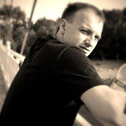 Денис, 29 лет, Тольятти