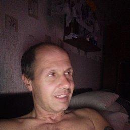 Андрей, 38 лет, Великий Новгород
