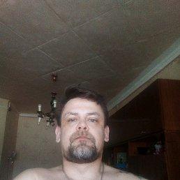 Денис, 41 год, Бокситогорск