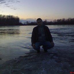 Павел, 36 лет, Рязань