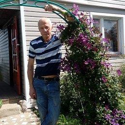 Анатолий, 59 лет, Руза