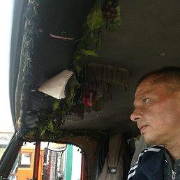 Алексей, 41 год, Владимир
