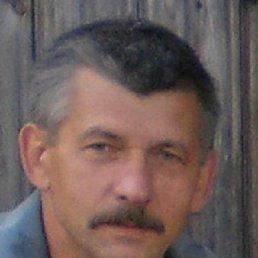 Николай, 64 года, Павловск
