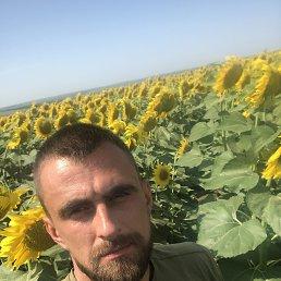 Андрей, 31 год, Павлоград