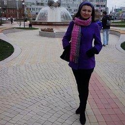 Александра, 38 лет, Красноярск