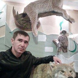 Александр, 29 лет, Ярково