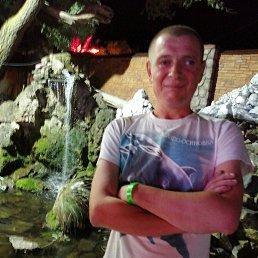 Сергей, 32 года, Мира
