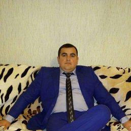 Давид, 29 лет, Реж