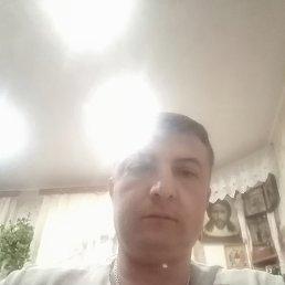 Коля, 37 лет, Липецк