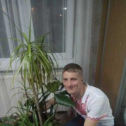 Василь, 29 лет, Белая Церковь