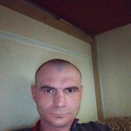 Андрей, 41 год, Каменск-Уральский