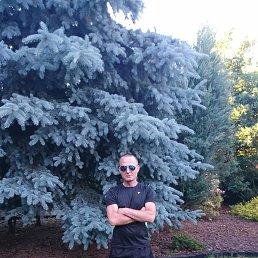 Александр, 37 лет, Новый Буг