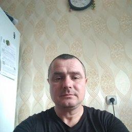 Андрей, 43 года, Луховицы
