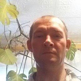 Сергей, 40 лет, Кашин