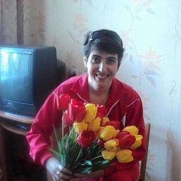 Елена, 20 лет, Волоконовка