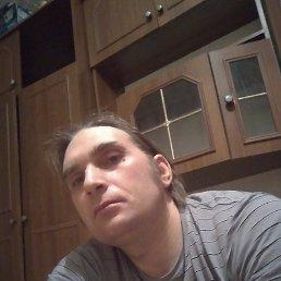 Артём, 43 года, Тула