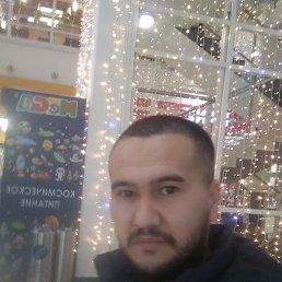 Али, 28 лет, Домодедово