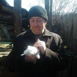 Николай, 51 год, Глазов