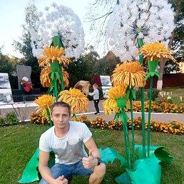 Владимир, 38 лет, Михнево