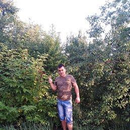 Антон, 28 лет, Краснодон