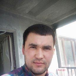 Рустам, 26 лет, Климовск