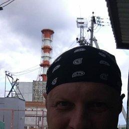 Алексей, 44 года, Десногорск