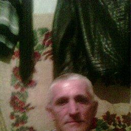 Николай, 56 лет, Берислав