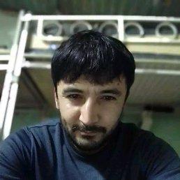 Дамир, 29 лет, Электроугли
