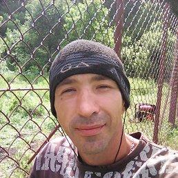 Диман, 37 лет, Заринск