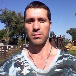 ДМИТРИЙ, 28 лет, Новочеркасск