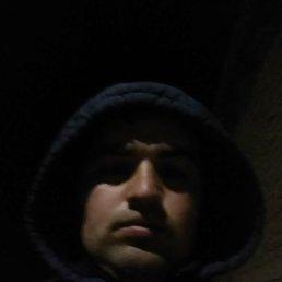 Шахром, 28 лет, Куйтун