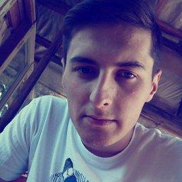 Илья, 23 года, Ленинск