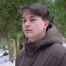 Никита, 20 лет, Краснознаменск