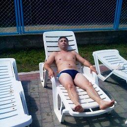 Василь, 46 лет, Хуст