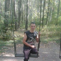 Евгений, 32 года, Бобровица