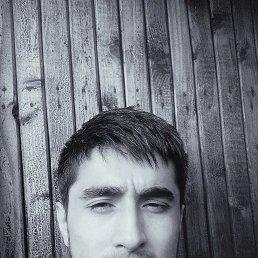 Sorbon, 35 лет, Удельная