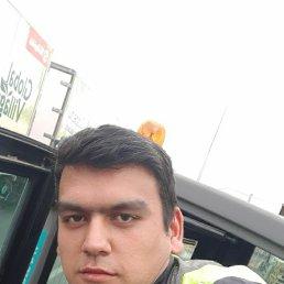 Али, 21 год, Ярославль