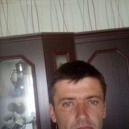 Дмитрий, 36 лет, Воронеж