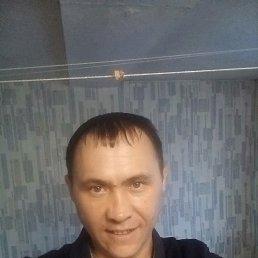Тарантино, 29 лет, Красноярск