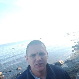 Андрей, 33 года, Зеленогорск
