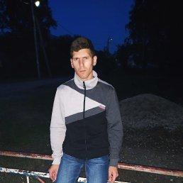 Денис, 26 лет, Касимов