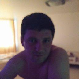 Николай, 36 лет, Кинельский