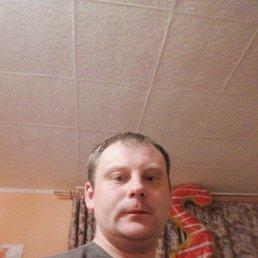 Вадим, 30 лет, Выборг