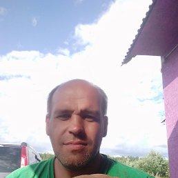 Сергей, 40 лет, Вологда