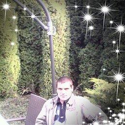 Илья, 45 лет, Новомиргород