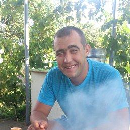 Вова, 36 лет, Николаев