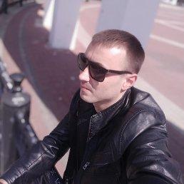 Виктор, 31 год, Мелитополь