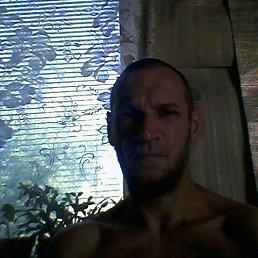 Евгений, 40 лет, Калининград