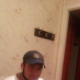 Шурик, 29 лет, Краснодар